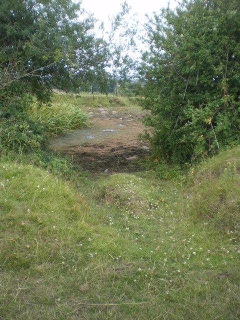 Clogged Pond at Pad Field  - Lancaster