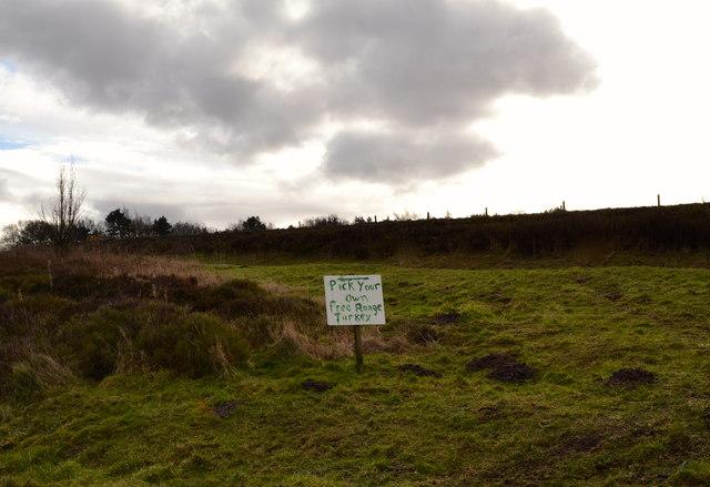 Pick Your Own … Turkeys! … Sign near Broomhead Moor, above Stocksbridge - 1