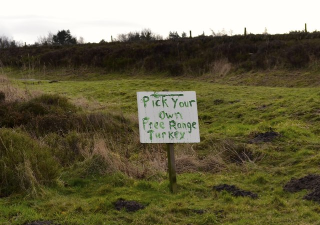 Pick Your Own … Turkeys! … Sign near Broomhead Moor, above Stocksbridge - 2