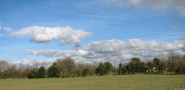 View towards Vine Cottage