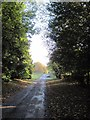 SE9958 : Road  at  Elmswell  toward  the  A166 by Martin Dawes