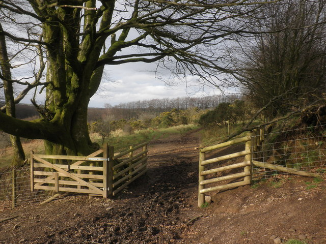 Gateway on Whiterocks Down