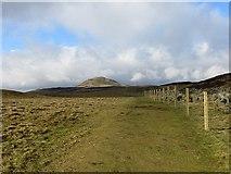 NO2206 : Path, Lomond Hills by Richard Webb