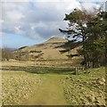 NO2206 : Path from Craigmead Quarry by Richard Webb