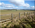 SU2878 : Downland Fields near Baydon by Des Blenkinsopp