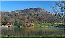 SJ9471 : Bottoms Reservoir by Peter McDermott