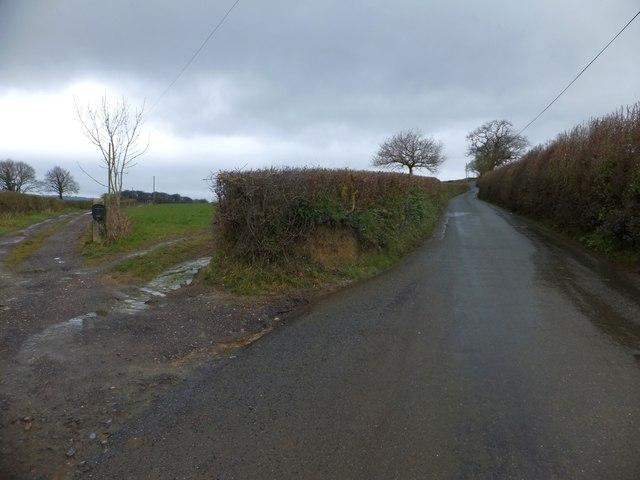 The road to Cheriton Cross