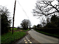 TM2398 : Rogers Lane, Shotesham by Adrian Cable
