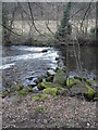 SK2479 : Weir on the River Derwent in Coppice Wood by Anthony Parkes