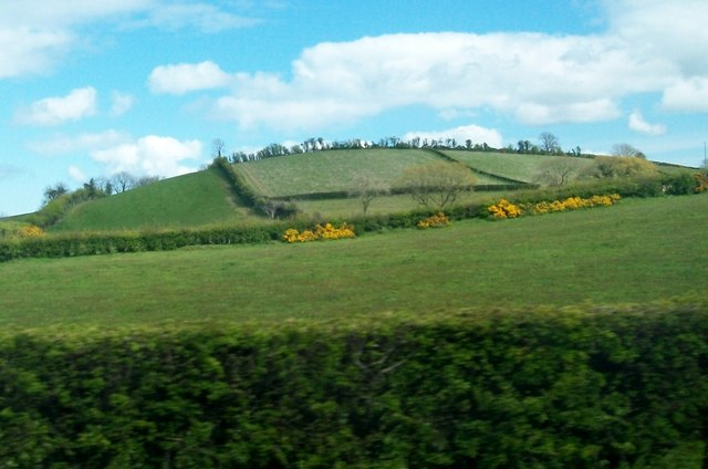 Hedge-divided fields on a drumlin east of the Carryduff Road