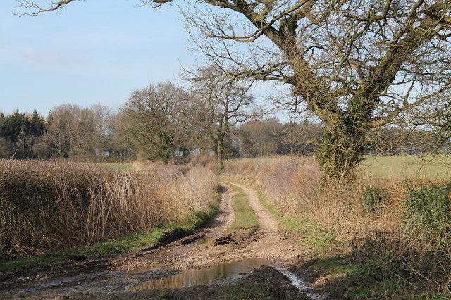 Wood Lane - a track