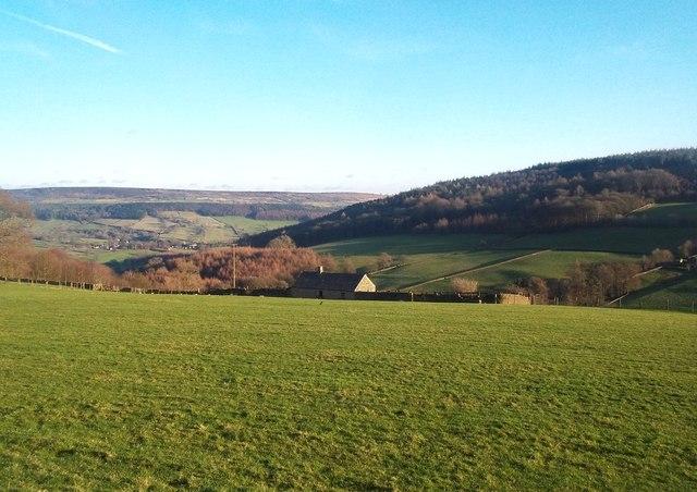 Grassland near Calton Houses