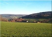 SK2468 : Grassland near Calton Houses by Jonathan Clitheroe