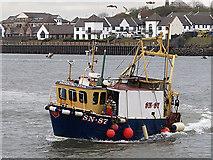 NZ3668 : Fishing boat at North Shields by William Starkey