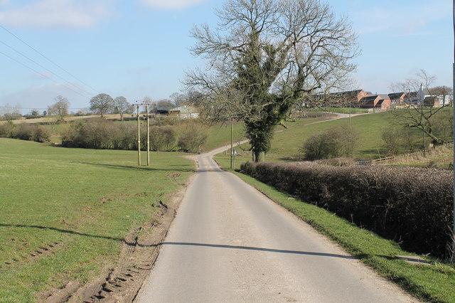 Ladyhole Lane towards Firs Farm