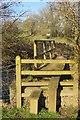 SX4575 : Bridge across the Lumburn by Derek Harper