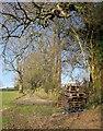 SX4575 : Pallets by the footpath, Lamerton by Derek Harper