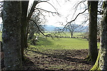 NX6280 : Farmland at Kirkland, St John's Town of Dalry by Billy McCrorie