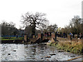 TL1307 : Bridge over Verulamium Lake by Stephen Craven