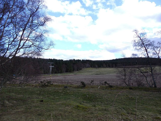 A field east of Birse Hall