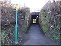 NZ6819 : Path under railway by JThomas