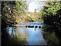 NZ8005 : Stepping  Stones,  River  Esk,  Egton  Bridge. by Martin Dawes