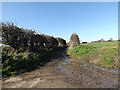 TM3689 : Angles Way footpath to the B1062 Watch House Hill by Adrian Cable
