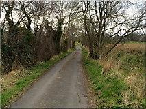 J2070 : Moss Lane, Derrykillultagh by Dean Molyneaux
