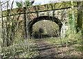 SE0420 : The south side of Highlee Lane railway bridge  by Humphrey Bolton