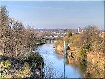 SJ8298 : River Irwell, Peel Park by David Dixon