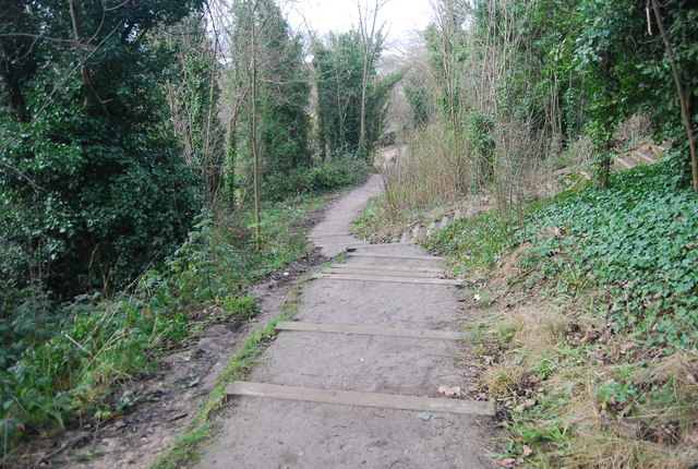Steps down to Chatham