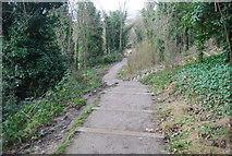 TQ7668 : Steps down to Chatham by N Chadwick