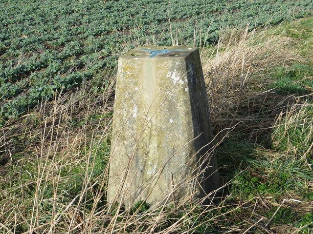A somewhat sunken Triangulation Pillar