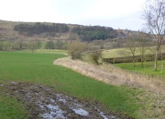 Valley below Oxpasture