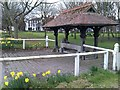 SE5953 : Covered drinking trough on Clifton Green by David Martin