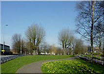 SO9098 : Public park within Wolverhampton Ring Road by Roger  Kidd