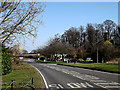 TM3690 : B1062 Watch House Hill & Tally Ho Tearooms by Geographer