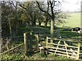 TQ3854 : Stile and footpath by Russel Wills