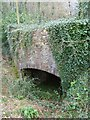 SX8759 : Paignton Zoo - disused lime kiln by Chris Allen