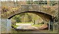 J3384 : Concrete railway bridge, Monkstown/Mossley (3) by Albert Bridge