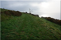 SX5646 : South West Coast Path above Stoke Beach by jeff collins