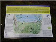 TM1645 : Wildlife in a Meadow sign in Christchurch Park by Hamish Griffin