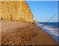 SY4690 : Fishing at East Cliff, West Bay by Nigel Mykura