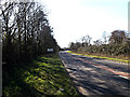 TM3692 : Entering Ellingham on the A143 Yarmouth Road by Adrian Cable