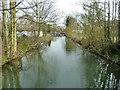 TL4411 : Mill stream, Burnt Mill by Robin Webster