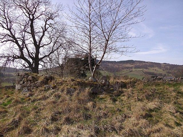 Auchenhove Castle mound