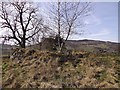NJ5502 : Auchenhove Castle mound by Stanley Howe