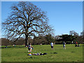 TQ3877 : Rounders match in Greenwich Park by Stephen Craven