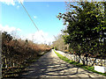 TM3592 : Hall Road & bridleway to Loddon Road by Adrian Cable