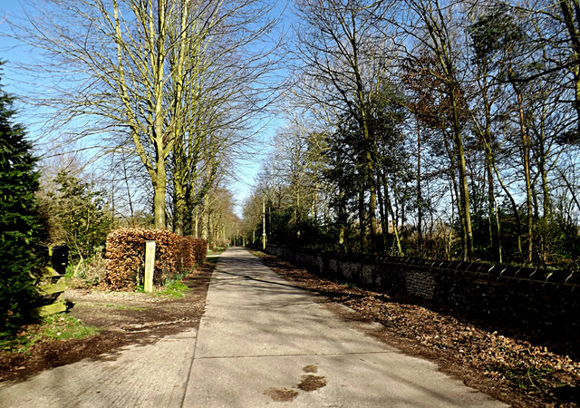 Hall Road to Ellingham Hall